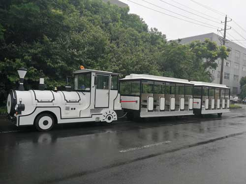 Large Sized Trackless Train for Sale In Philippines